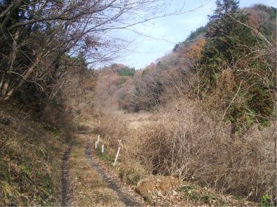 飯能周辺は、ちょっと山には入ればどこもこんな景色であります。