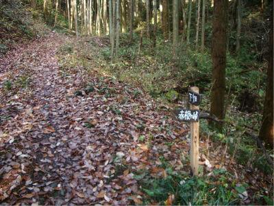 林道も落ち葉で完全に隠れてしまってるんで、普通の車で来るのは危険かも。地元のおっさんはみんな軽トラでここまでやってきています。おばさんは歩き。