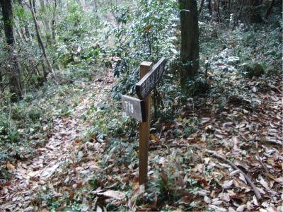 上畑方面との分岐。こっちの方が林道歩きが少ないのかな? まあ、おそらく上畑方面は昔からある道だろう。