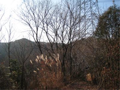 こういう山では、送電線の下にたいていしっかりとした道があるので、訳がわからなくなったら送電線を目指すといいかも