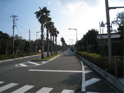 気分は「宮崎県」どことなく、南九州の雰囲気が出てました。
