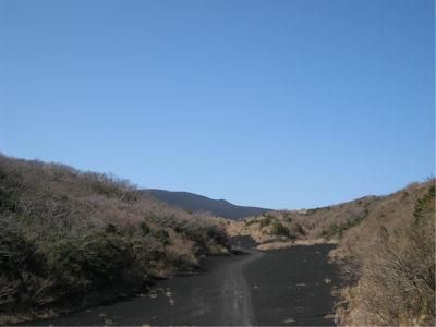 荒れた道でも走れるような車だったら、そのまままっすぐ砂漠に向かって爆走することも可能なんだろうな。まあ、国立公園だからそういうことは禁止されているだろうけれども。