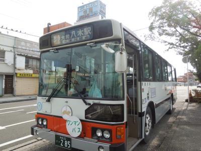 見た目は具通の路線バスですが、中身も普通の路線バスです。まあ、観光バスっぽいと言えばそうですけど、リクライニングなどはないですよ